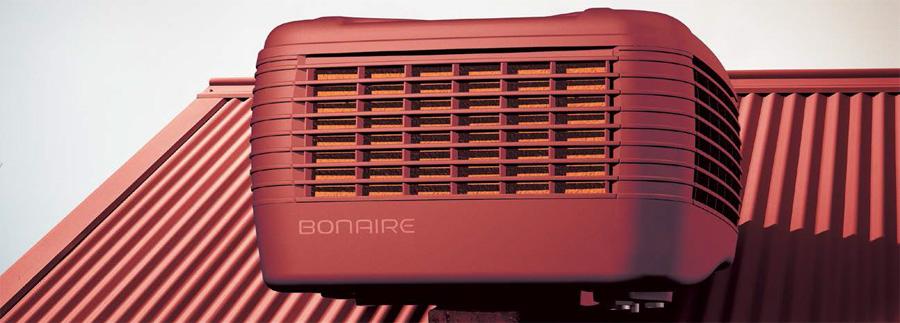 Bonaire-Cooler